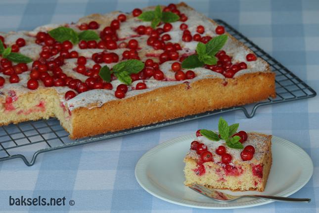 rode bessen cake