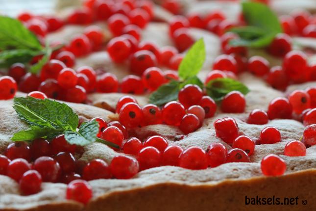rode bessen cake close-up